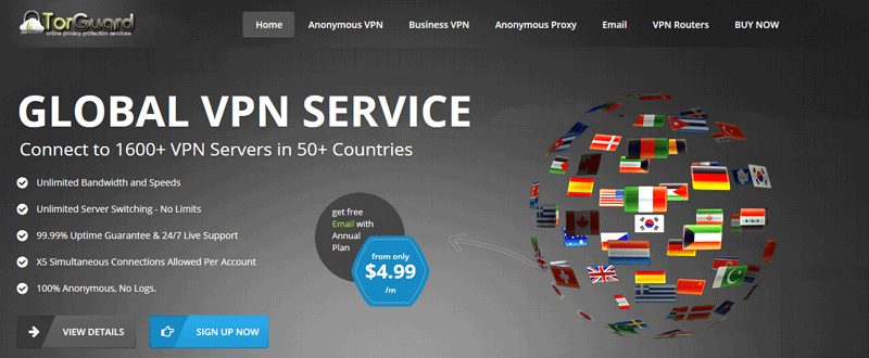 Screenshot of Torguard's website